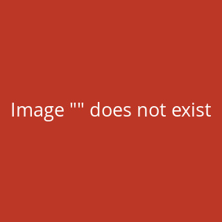 Durable PEN HOLDER cubo Stifteköcher, mit 1 Fach, Kunststoff